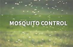 Mosquito Control | Vista Turfcare